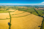 Одобрени са две национални научни програми в сферата на селското стопанство
